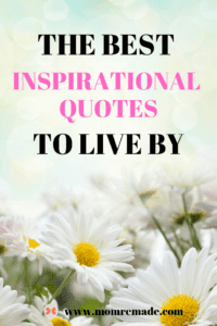25 Quotes to Inspire You to Live Your Best Life. Daisies in the background with a text overlay.